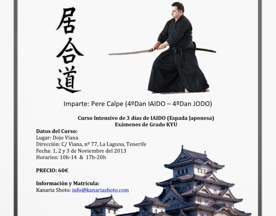 Cartel-Curso-IAIDO-Kanaria-Shoto-Nov2013