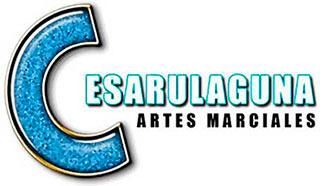 cesarulaguna-logo-portada