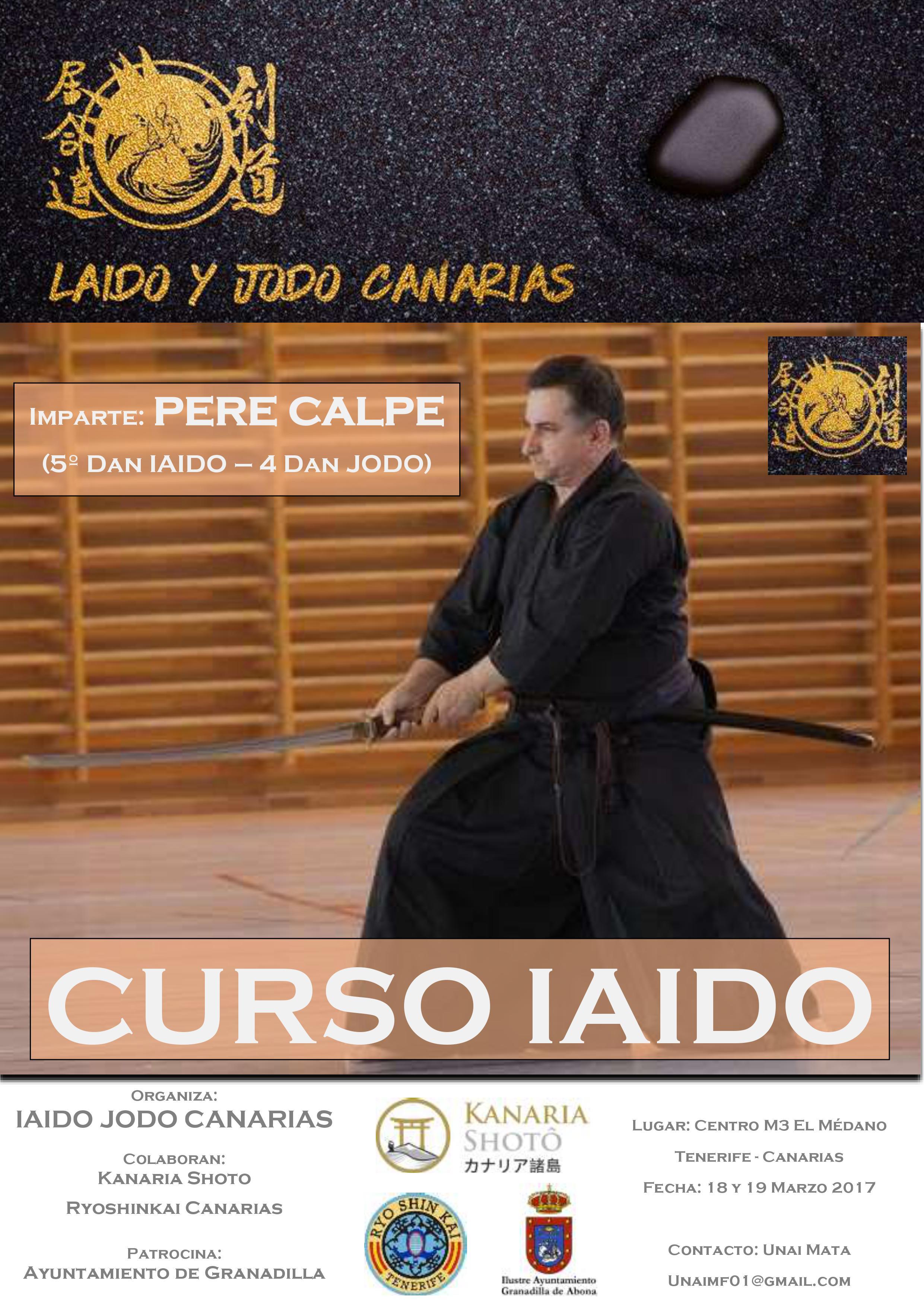 Curso Iaido Tenerife - Iaido Jodo Canarias - Pere Calpe